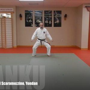 Ananku Matsubayashi Ryu Kata