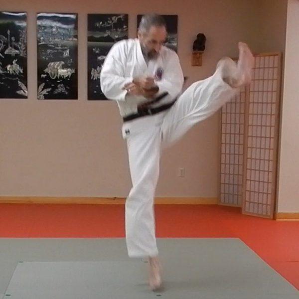 Chinto Matsubayashi Kata