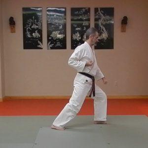 Fukyugata Ichi Matsubayashi-ry Kata