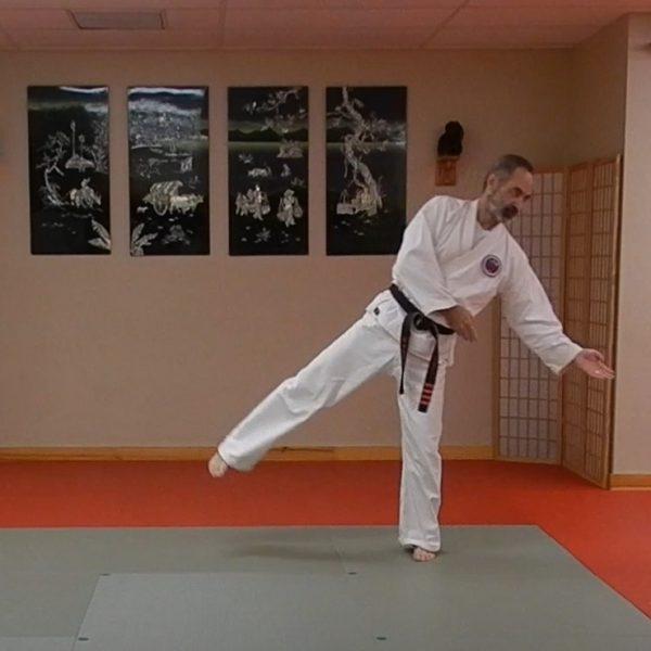 Gojushiho Matsubayashi Ryu Kata