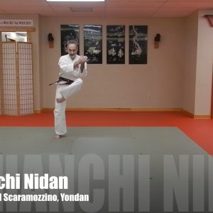 Naihanchi Nidan Matsubayashi Ryu Kata