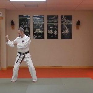 Naihanchi Sandan Matsubayashi Ryu Kata