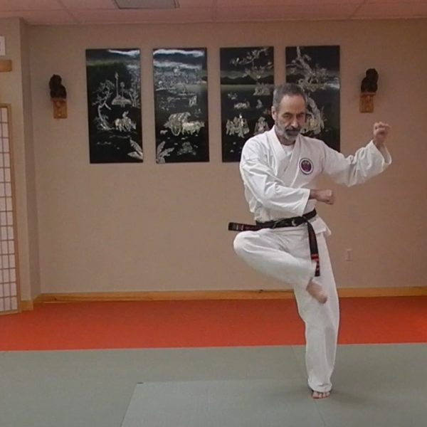 Naihanchi Shodan Matsubayashi Ryu Kata