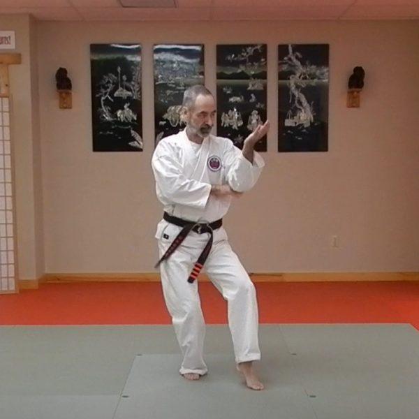 Passai Matsubayashi Ryu Kata