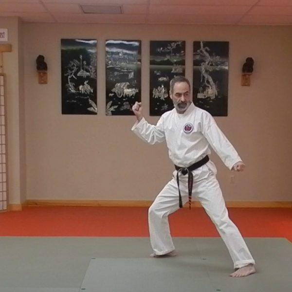 Pinan Godan Matsubayashi Ryu Kata