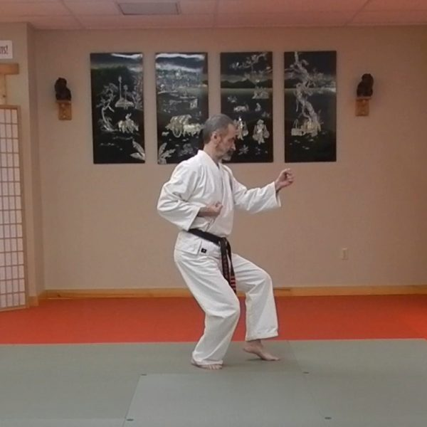 Pinan Nidan Matsubayashi Ryu Kata