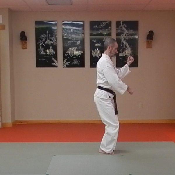 Pinan Sandan Matsubayashi Ryu Kata