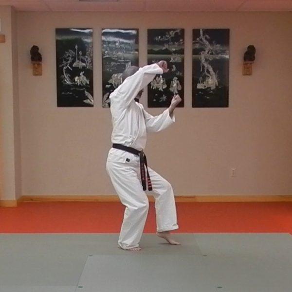 Pinan Shodan Matsubayashi Ryu Kata