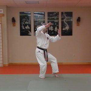 Pinan Yondan Matsubayashi Ryu Kata