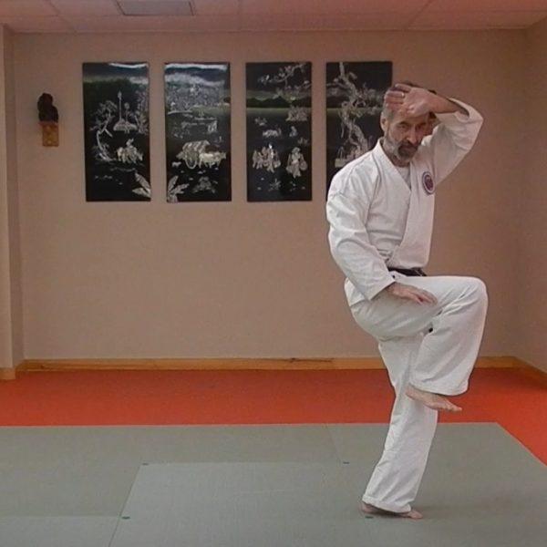 Rohai Matsubayashi Ryu Kata