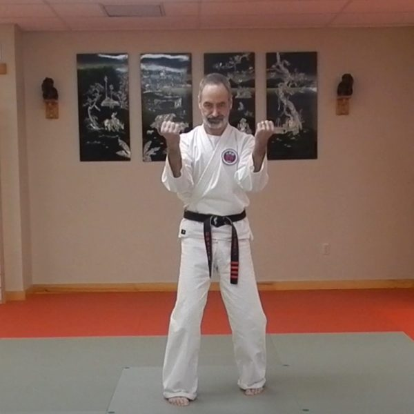 Sanchin Goju Ryu Kata
