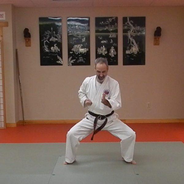 Wanshu Matsubayashi Ryu Kata