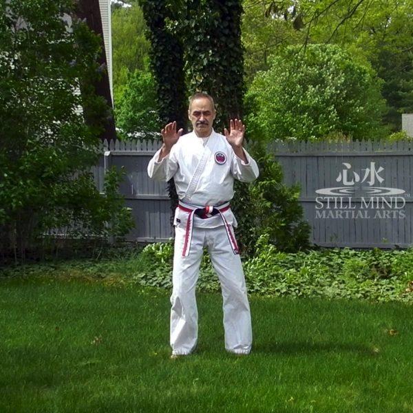 MS Tai Chi Motion Meditation 1 Upward & Downward