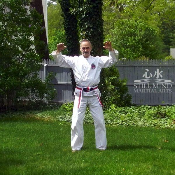 MS Tai Chi Motion Meditation 2 Inward and Outward