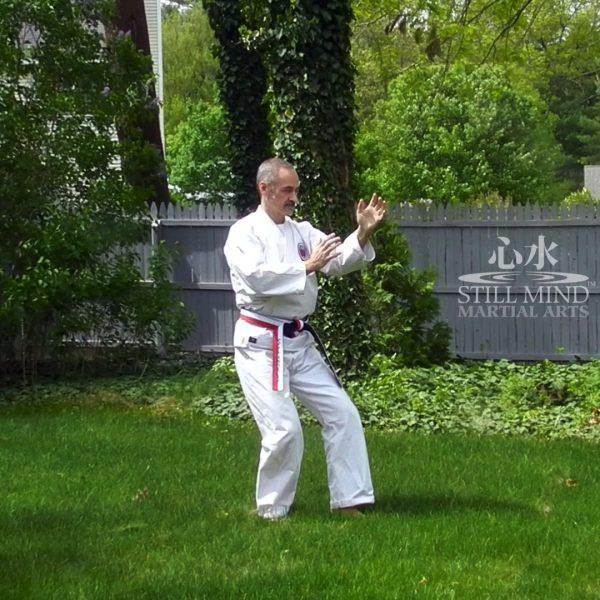 MS Tai Chi Motion Meditation 3 Raise Hands & Stance