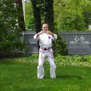 MS Tai Chi Motion Meditation 4 Tai Chi Stance