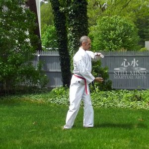 MS Tai Chi Motion Meditation 5 Turn the Tai Chi Ball