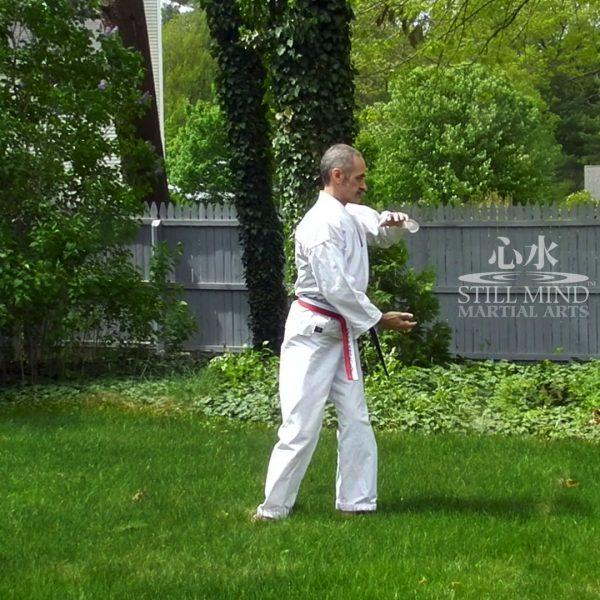 MS Tai Chi Motion Meditation 5 Turn the Tai Chi Ball