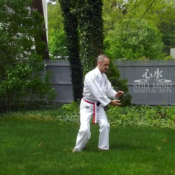 MS Tai Chi Motion Meditation 6 Twist the Tai Chi Ball