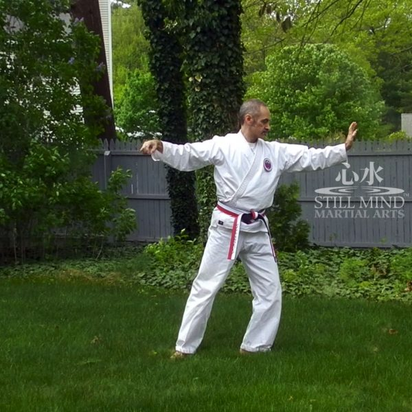MS Tai Chi Motion Meditation 7 Single Whip & Split