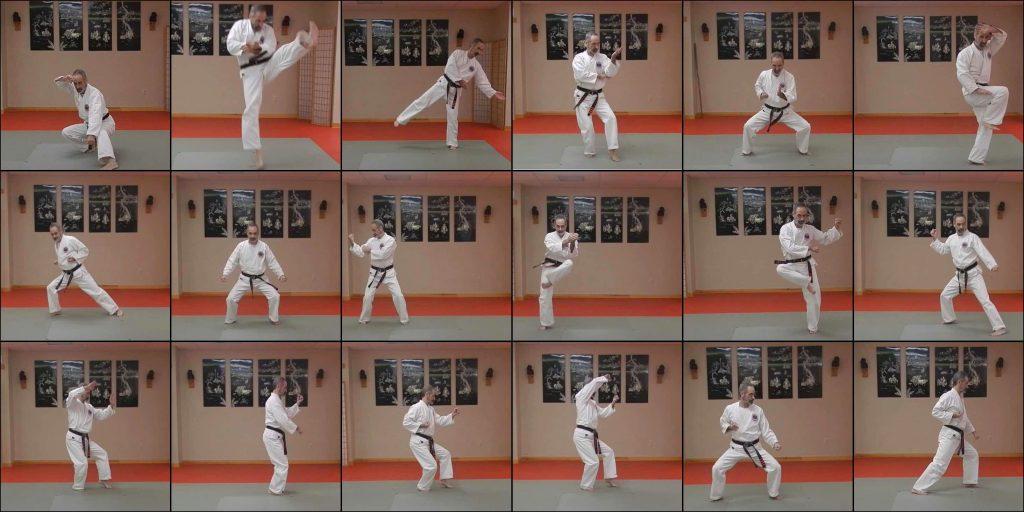 A Study of the 18 Matsubayashi Ryu Kata
