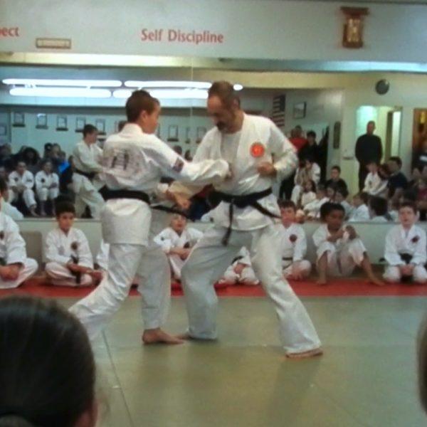 Yakusoku Kumite I-VI