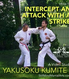 How to Intercept an Attack with a Strike - Yakusoku Kumite I Video Study