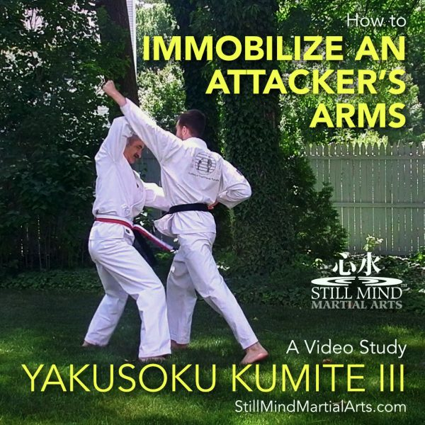 How to Immobilize an Attacker's Arms - Yakusoku Kumite III Video Study