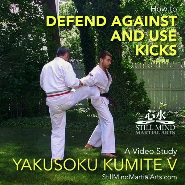 How to Defend Against and Use Kicks - Yakusoku Kumite V A Video Study