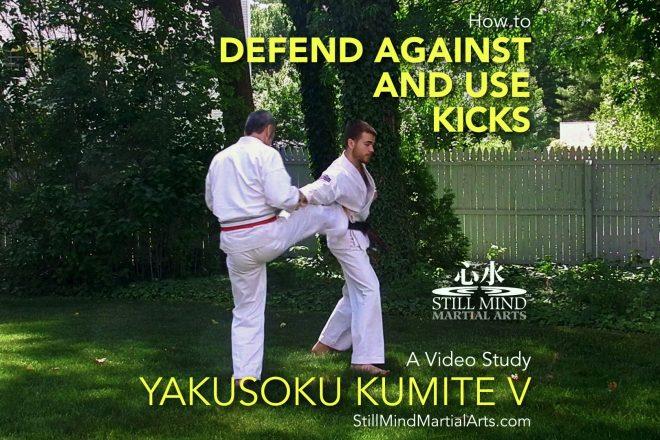 How to Defend Against and Use Kicks - Yakusoku Kumite V A Video Study