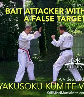 How to Bait an Attacker with a False Target - Yakusoku Kumite VI A Video Study