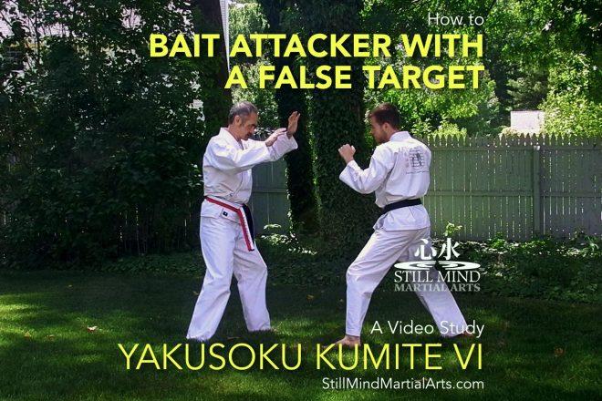 How to Bait an Attacker with a False Target - Yakusoku Kumite VI A Video Study