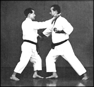 Final Move of Yakusoku Kumite II in Book