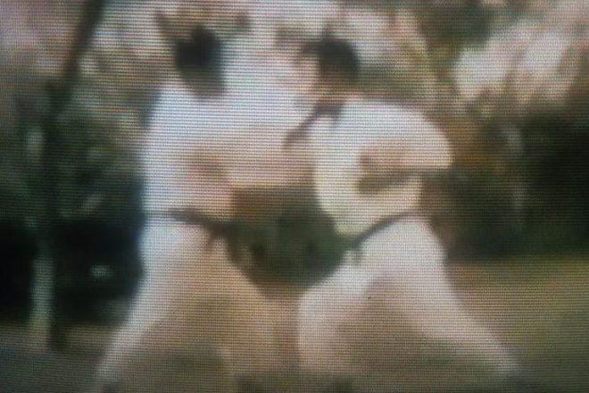 Shoshin Nagamine Evolution of Yakusoku Kumite II 4