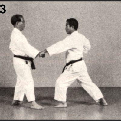 Shoshin Nagamine Demonstrates Yakusoku Kumite II #3