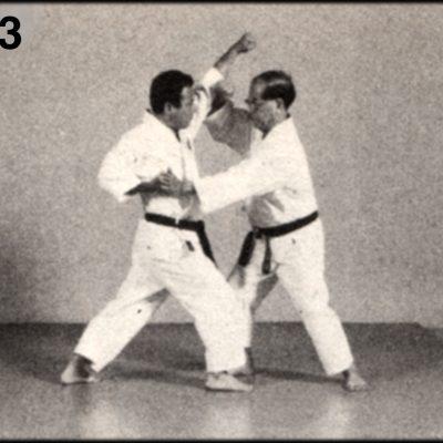 Shoshin Nagamine Demonstrates Yakusoku Kumite III #3