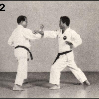 Shoshin Nagamine Demonstrates Yakusoku Kumite V #2