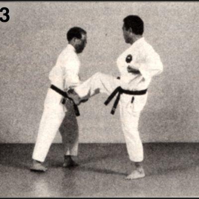 Shoshin Nagamine Demonstrates Yakusoku Kumite V #3