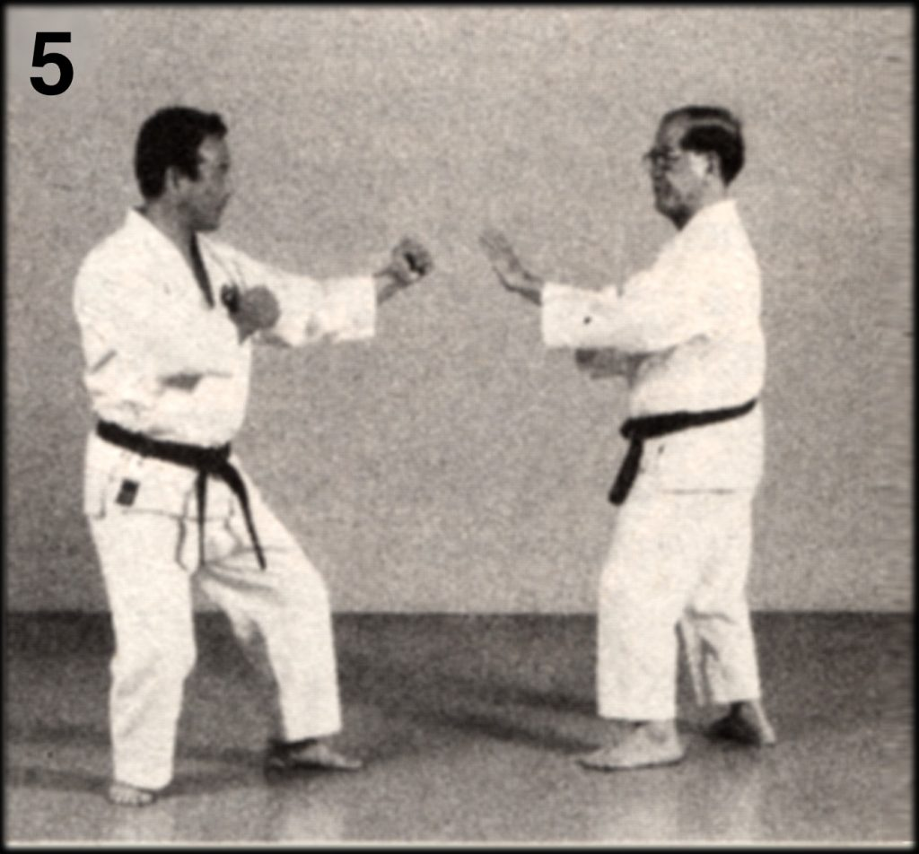 Shoshin Nagamine Demonstrates Yakusoku Kumite V #5