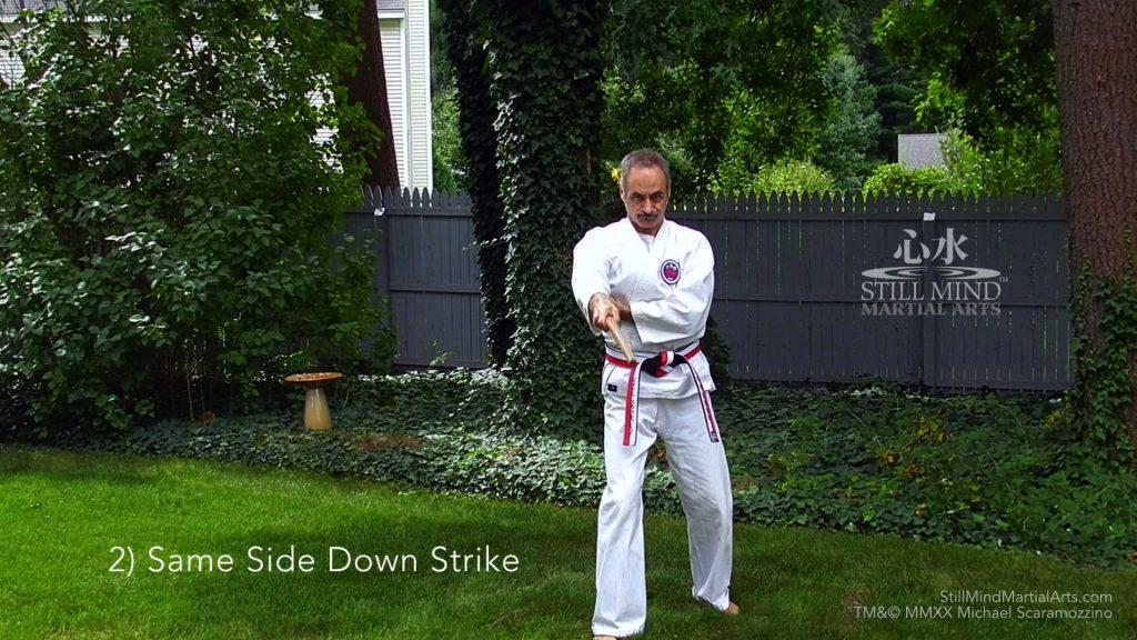2 Same Side Down Strike - Kobudo Bo Basics