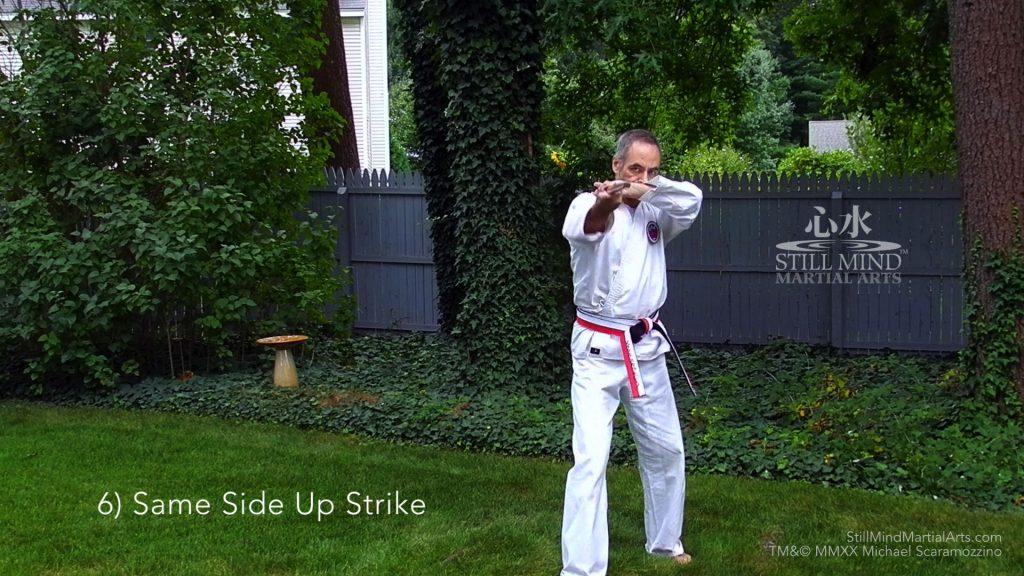 6 Same Side Up Strike - Kobudo Bo Basics