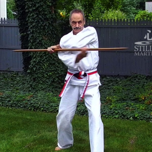 10 Basic Bo Strikes - Kobudo Kihon