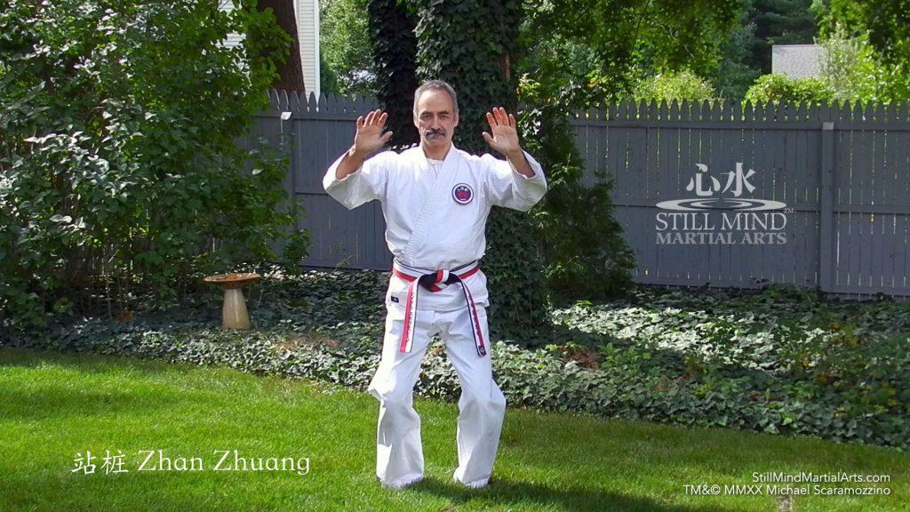 Zhan Zhuang Full Circle Standing Meditation Qigong